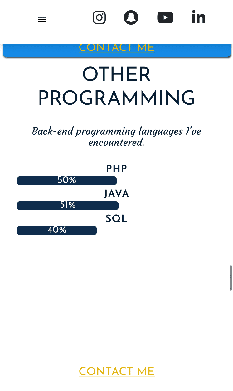 Skills Other Programming-Responsive